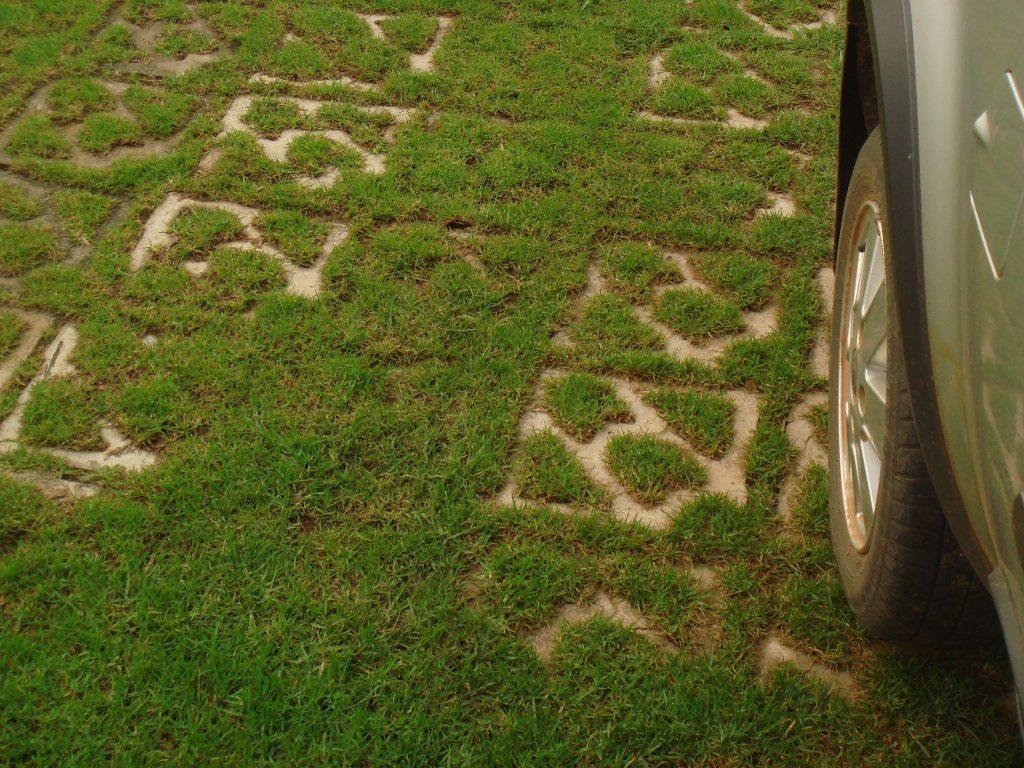 Grass-Paver-Terracrete2